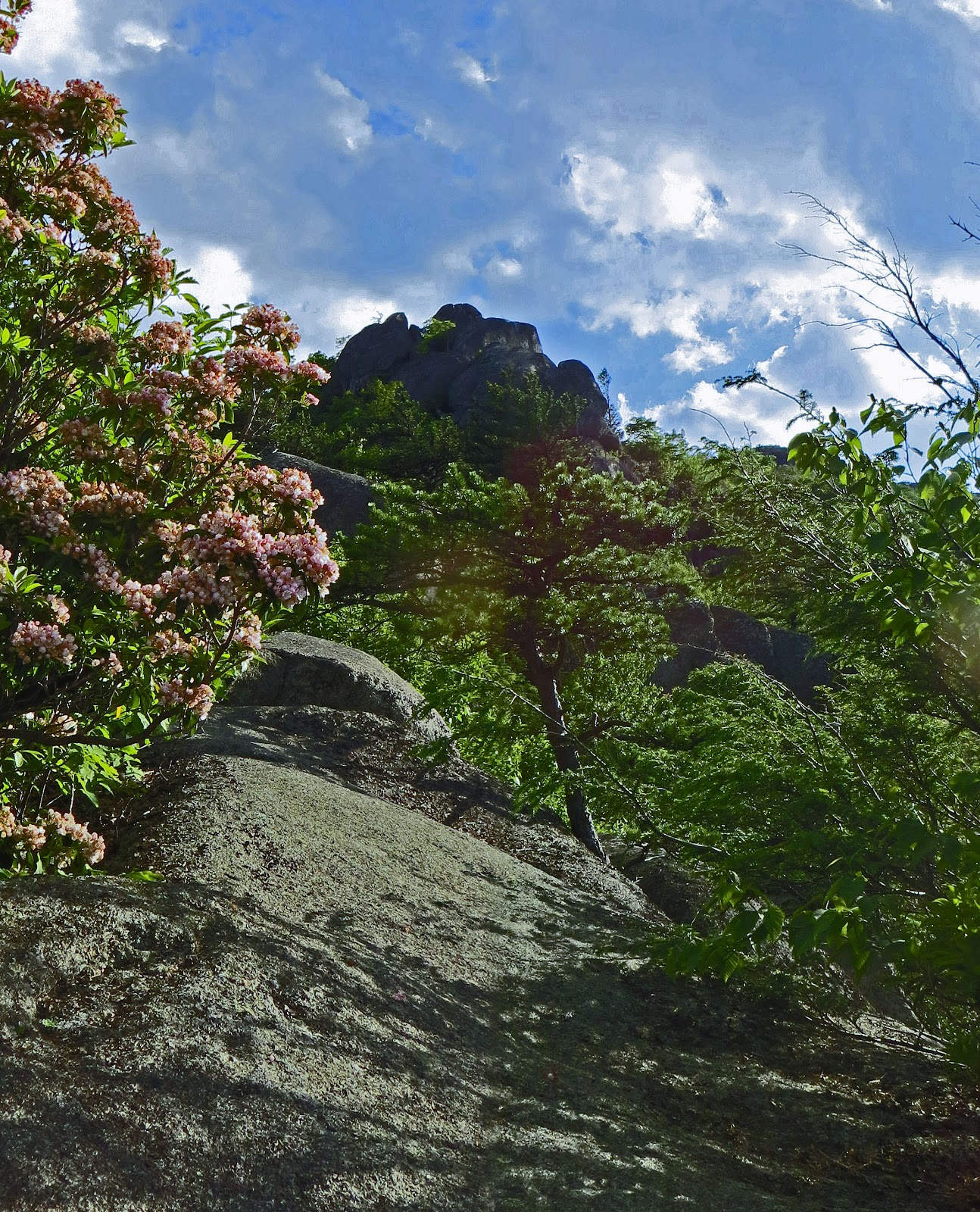 Old Rag Mountain Hikes/Patrols By RSL: Sunday June 3, 2012
