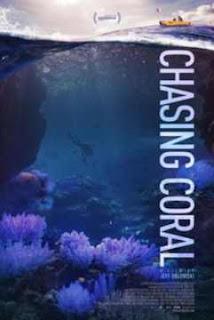 En busca del coral en Español Latino