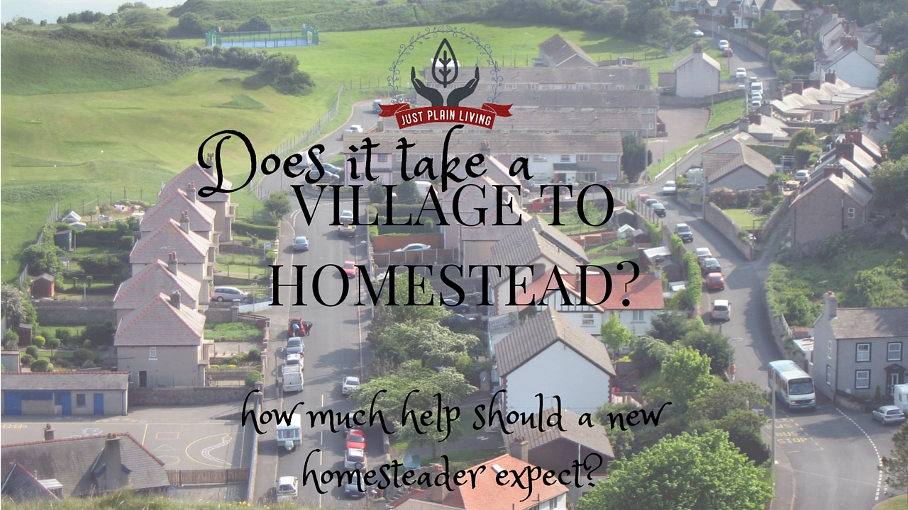 How much help - and bailing out - does a homestead need from the neighbouring community. Does it really take a village to homestead?