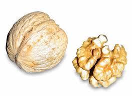 las saludables nueces también se recogen en otoño