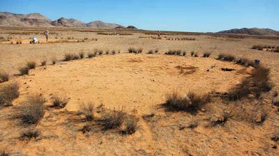 Secondo la popolazione locale i cerchi fatati sono opera degli spiriti