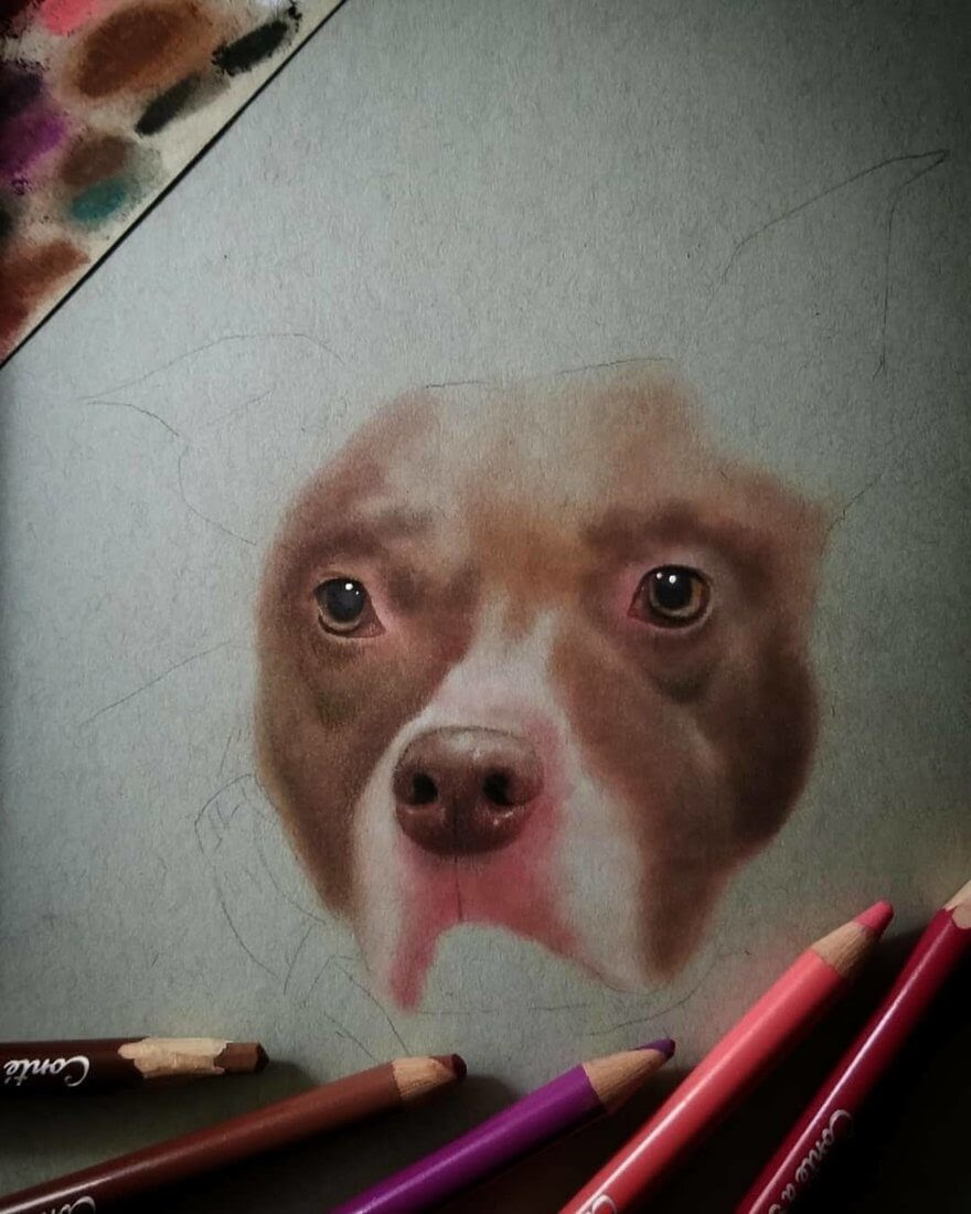 03-WIP-Dog-Rene-Lopez-Animal-Pencil-and-Pastel-Portrait-Drawings-www-designstack-co