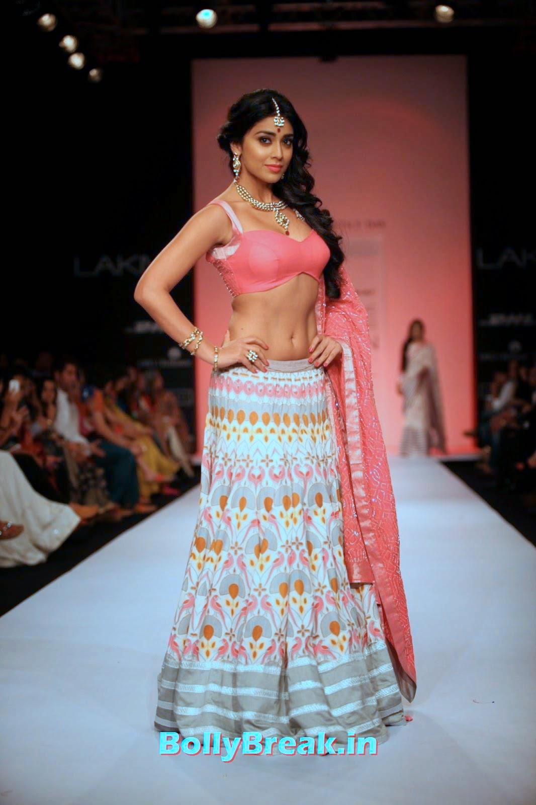 ,  Shriya Saran Navel HD hot Photos