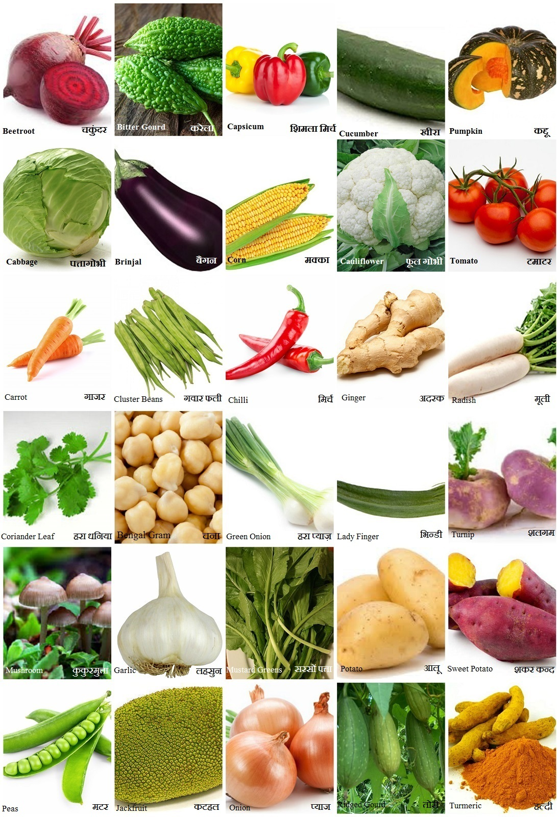 All Vegetables Name In Hindi and English सब्जियों