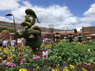 disney flower and garden festival epcot