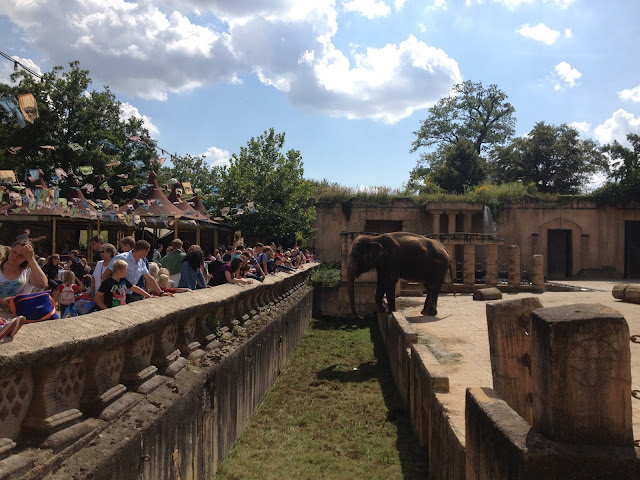 me_encanta_elefante