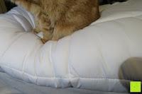 Widerstand: MESANA Premium Matratzen-Schoner | Größe: 140x200 cm, Höhe: 27cm | weiß aus Soft Touch Microfaser | 100% Polyester | Matratzen-Auflage auch für Ihr Boxspring-Bett und Wasserbett | Unter-Bett