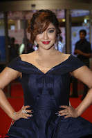 Payal Ghosh aka Harika in Dark Blue Deep Neck Sleeveless Gown at 64th Jio Filmfare Awards South 2017 ~  Exclusive 084.JPG