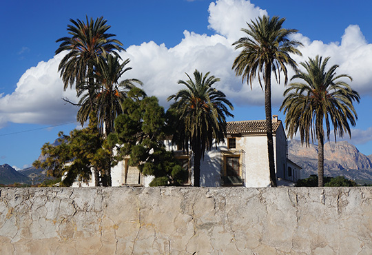 travel photography, travel photo, the ranch, Spain, Espanol, Europe, palm trees, blue sky, Spanish architecture, Sam Freek,