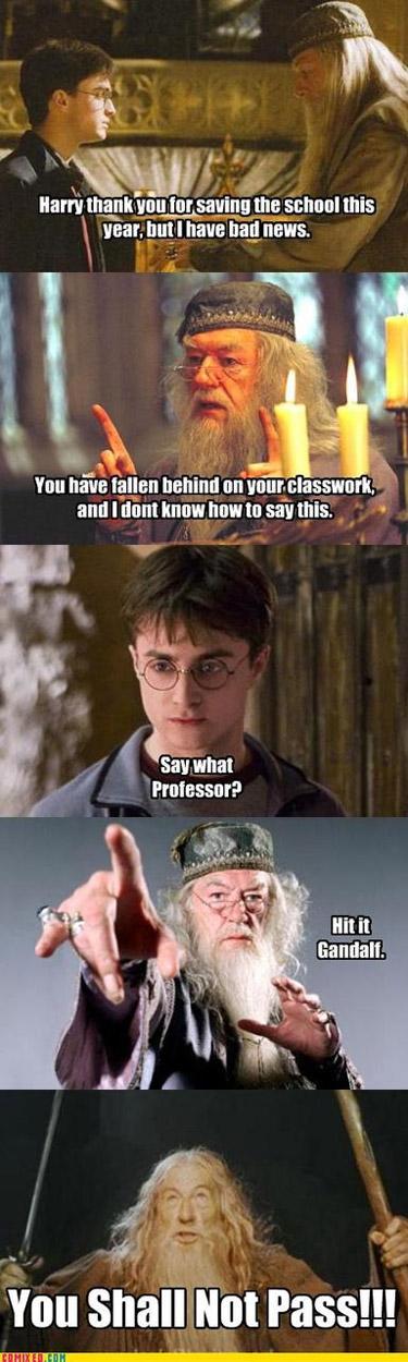 Gandalf and Dumbledore team up