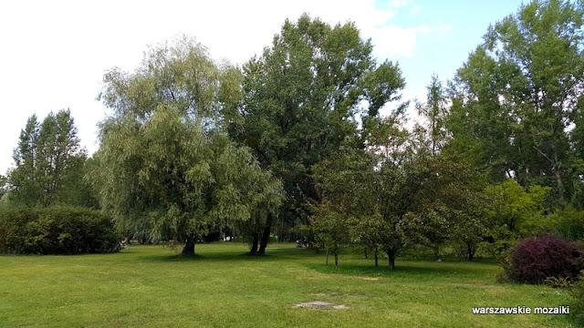 Warszawa Warsaw Bemowo parki warszawskie teren zielony Lazurowa zieleń