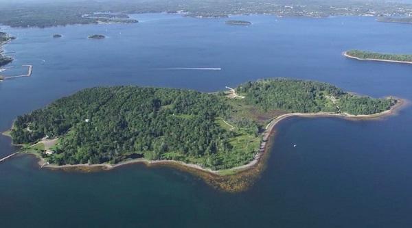 Oak Adası : Hazine ve Lanet