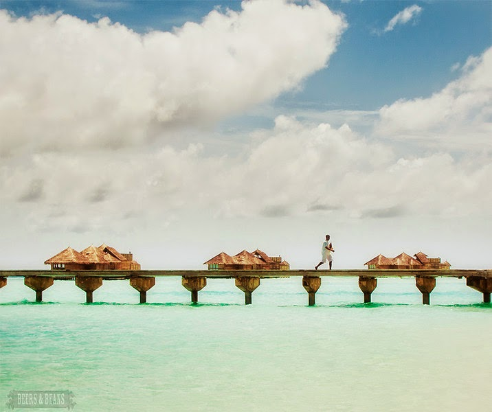 viaje al paraiso / travel to the paradise