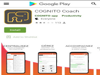 Game melatih kecerdasan otak Cognito