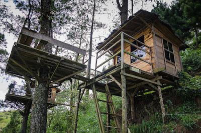 Paralayang dan Rumah Pohon