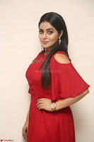 Poorna in Maroon Dress at Rakshasi movie Press meet Cute Pics ~  Exclusive 175.JPG