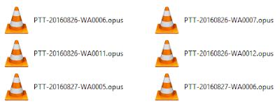 Che cos'è un file OPUS