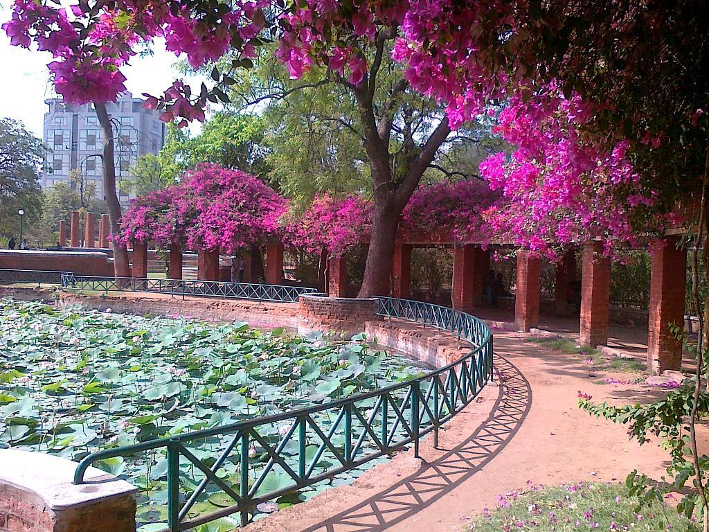 Ahmedabad City Portal
