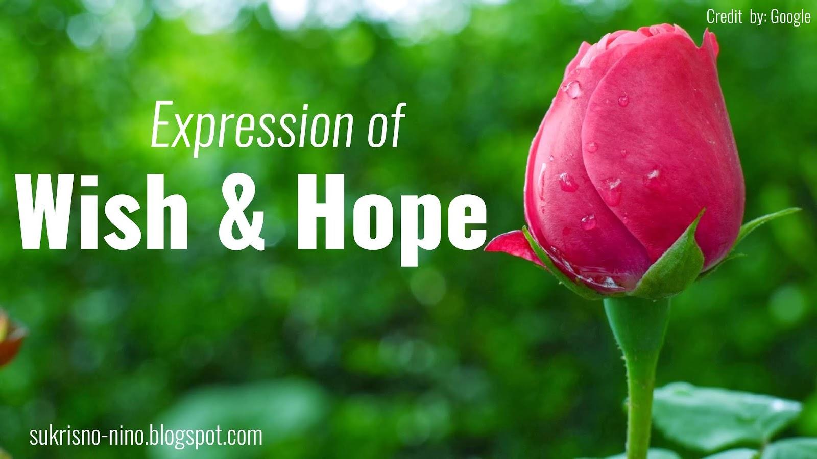Expression Wish And Hope Sukrisno Nino