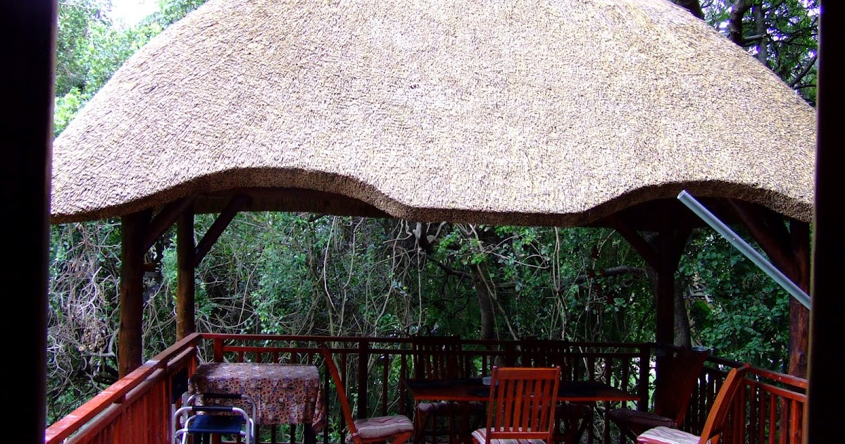 Thatch of the Day Thatch Lapa Braai  Outdoor Entertainment Area Designs