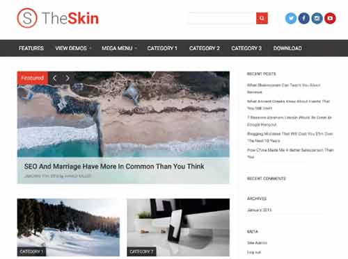 The Skin WordPress Theme