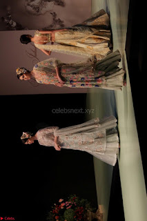 Pallavi Jaikishan Celete 45year In Industry witha beautiful Fashion Show 13.JPG