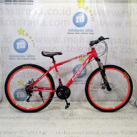 evergreen mountain bike