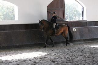 Portugal, ratsastusmatka, Riitta Reissaa, Horsexplore, ratsastusmatka