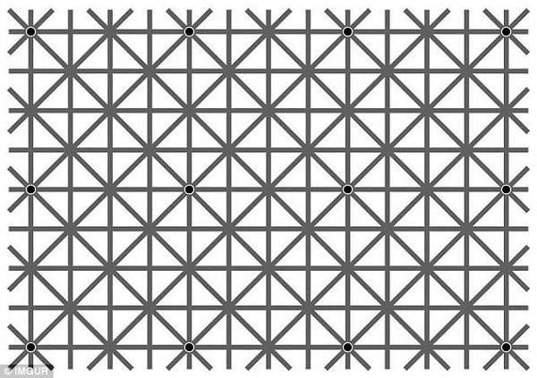 خدعة النقاط السوداء فى الصورة لماذا لا تراها العين دفعة واحدة