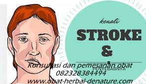 obat stroke herbal,obat herbal stroke,obat stroke denature,obat lumpuh separo,obat stroke ringan,obat stroke berat