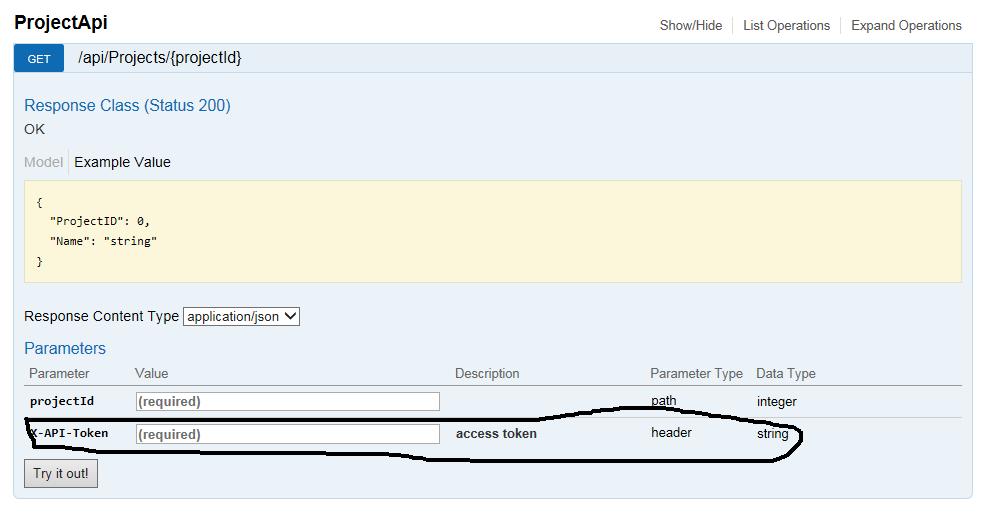 Developer Points: Swagger UI Add Authorization Header (Custom Header)