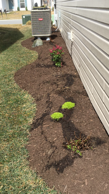 narrow side yard mulch bed