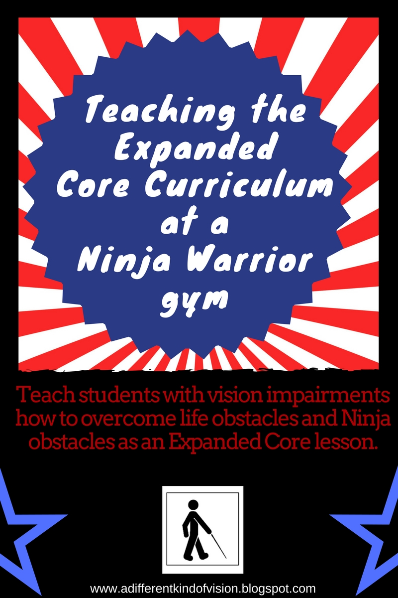 Teaching the Expanded Core Curriculum at Ninja Warrior Gym
