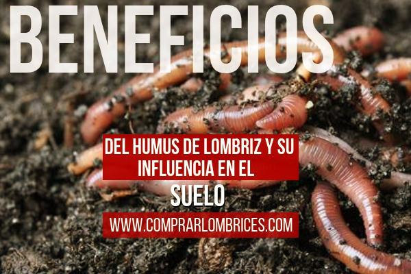 Los Beneficios del Humus de Lombriz, Transformación de Residuos Orgánicos