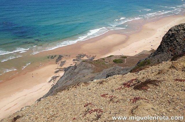 Cordoama-Algarve-Portugal