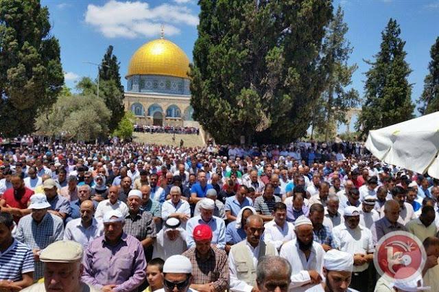 """Israel"" tahan 5 warga Palestina saat puluhan ribu orang hadiri shalat Jum'at di Al-Aqsha"