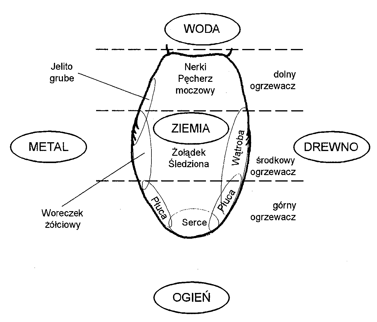 Mandala Ycia Mapa J Zyka