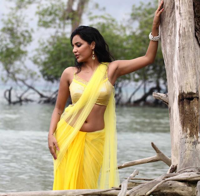 saree actress navel show images