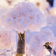Blush Pink - Great Idea for Your 2013 Wedding Color Theme