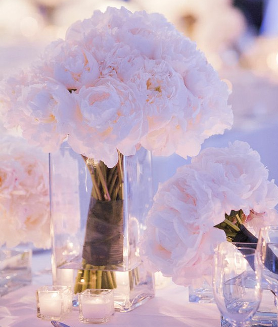 (مسابقة العرايس) Romantic+Pink+Peonie