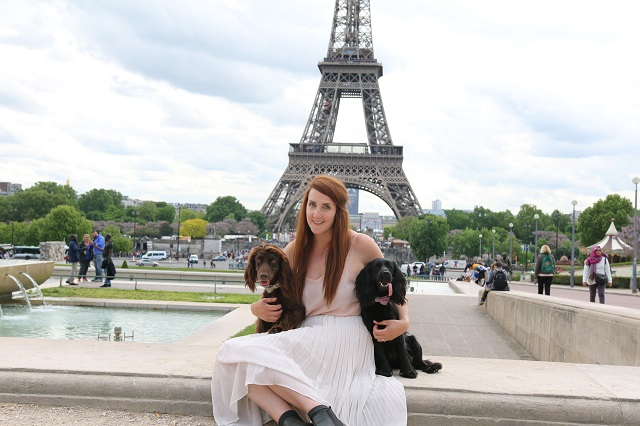 Travelling abroad with your Pet// Pet Travel Series
