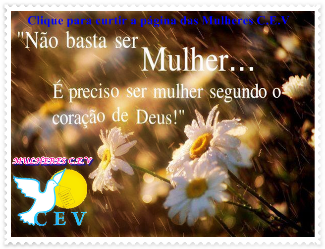 Fan Page Mulheres C.E.V