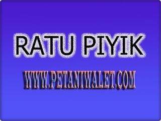 Download Suara Walet Ratu Piyik Panggil