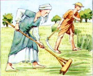 wereldgeschiedenis boeren in de middeleeuwen