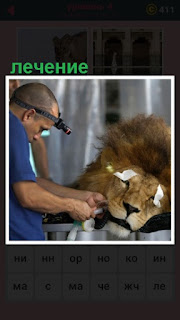 651 слов на столе лежит лев, которого лечит ветеринар 4 уровень