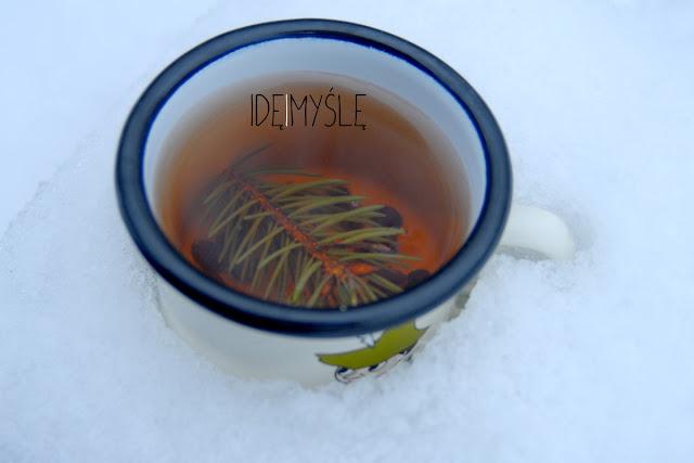 owocowa herbata z dzikich roślin, owoce leśne, napar z głogu