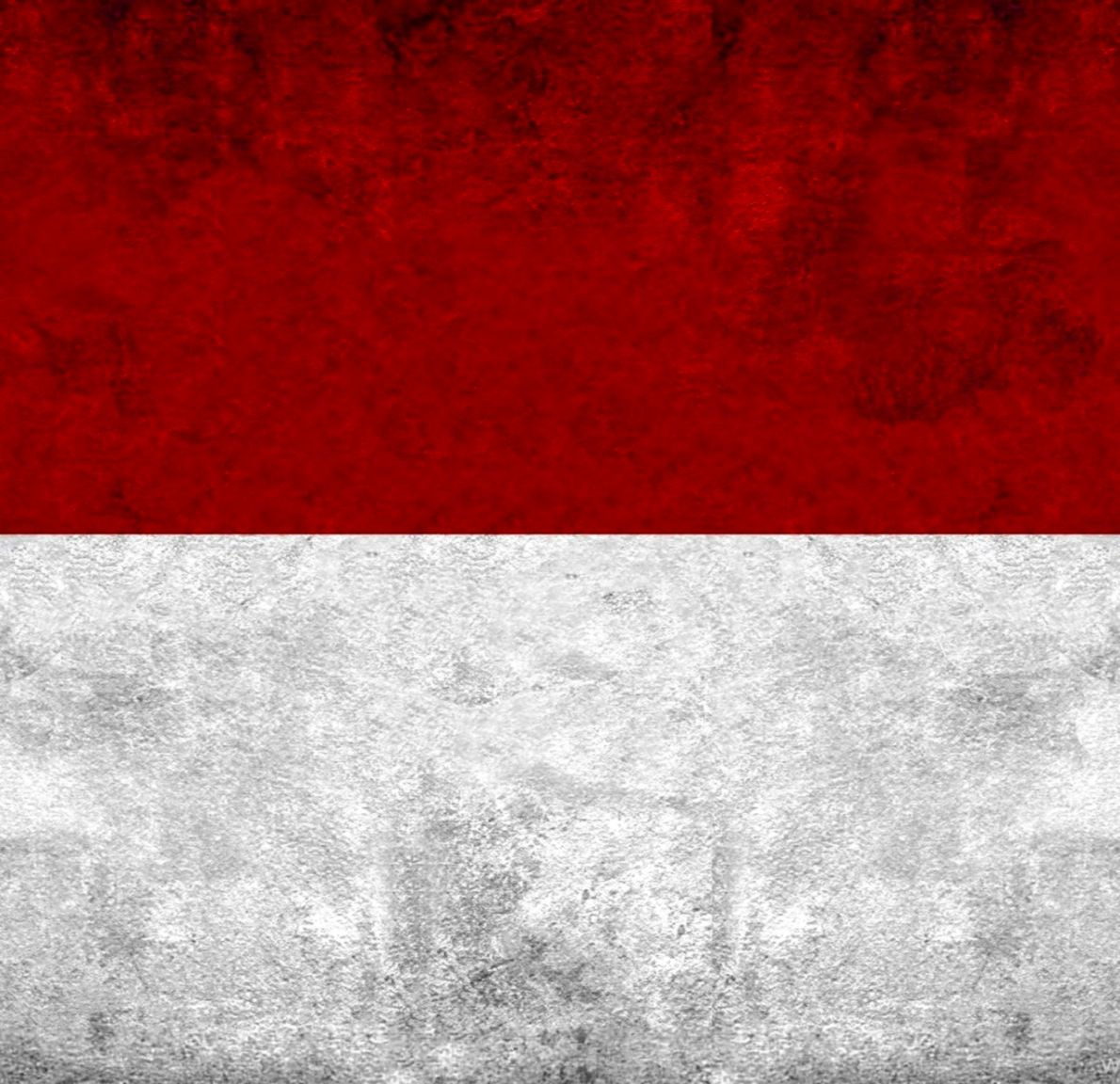 indonesia countries flag artwork
