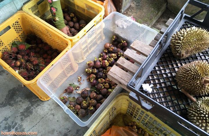 Farm Stay Relau, Bandar Baharu, Kedah