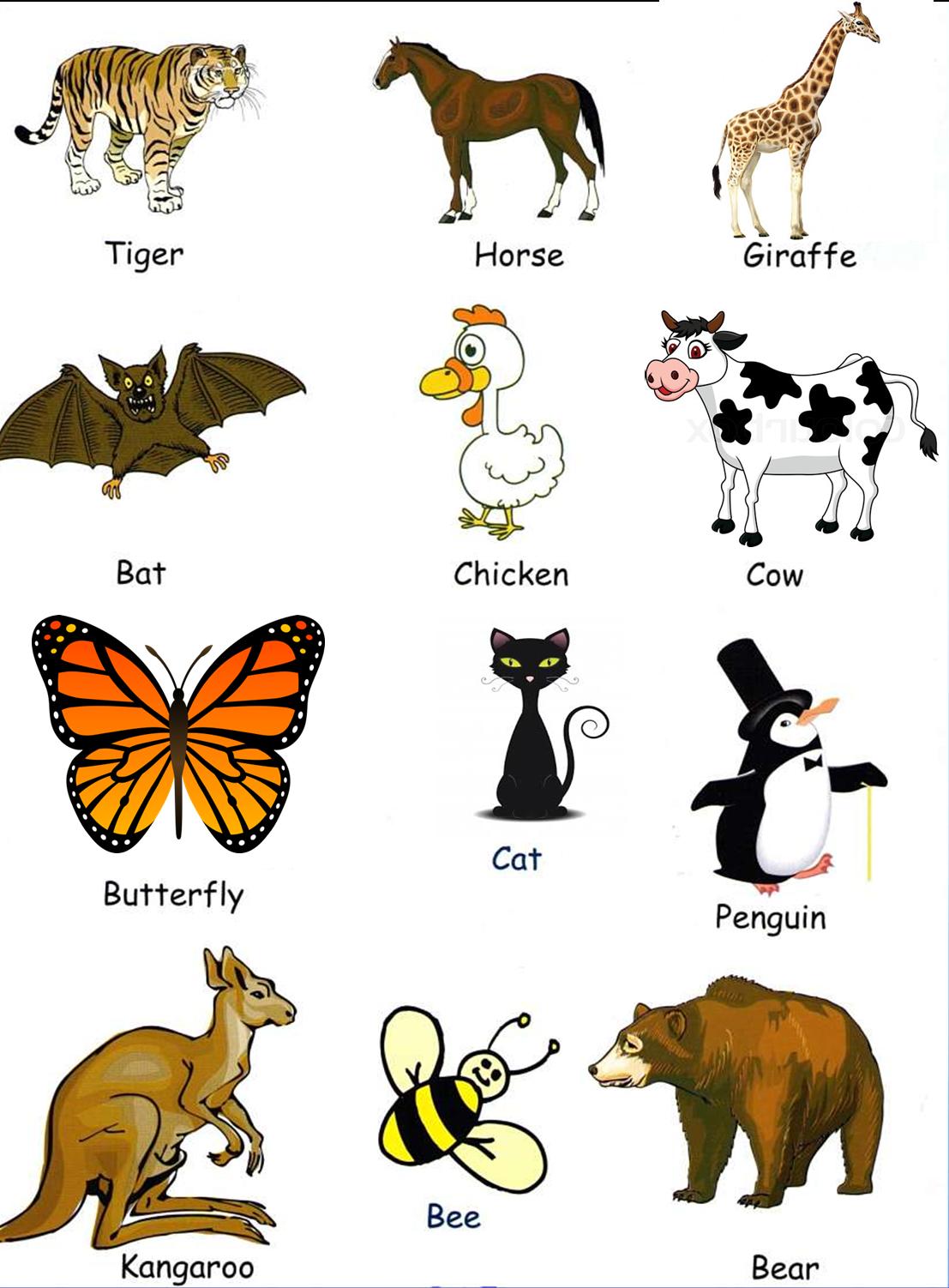 Nombres de Animales en inglés? con Imágenes | Material para ...