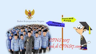 CPNS 2017 jalur umum